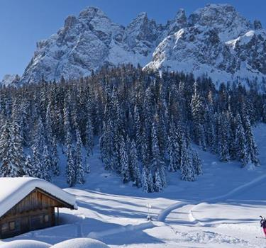 1300-500-winter-holidaypass[2]